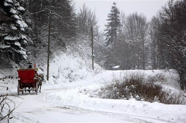 Yurttan kar manzaraları galerisi resim 15