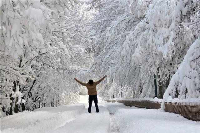 Yurttan kar manzaraları galerisi resim 22