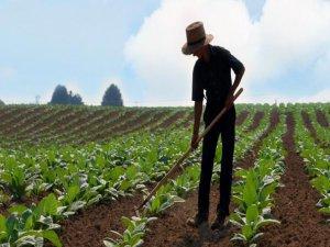Çiftçiye verilen destek arttı