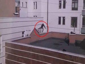 Damdan dama atlamada korkunç son!