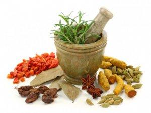 Antioksidan etkili bitkilere rağbet arttı!