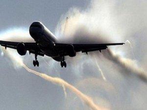 Kargo uçağı kuş sürüsüne çarptı