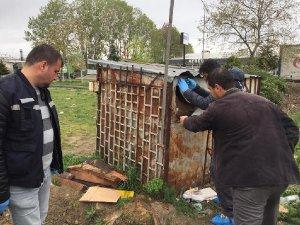 Bursa'da güvercin hırsızlığı