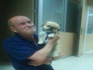 Bursa'da parkta çalınan köpek bulundu