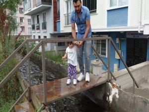 Bursa'da laz fıkrası gibi olay