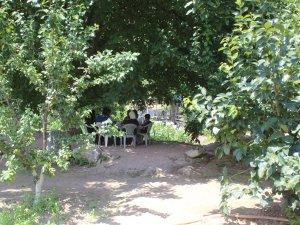 Bursa'daki bu bahçeye yoğun ilgi!