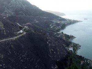 Marmara Adası'nda yangın