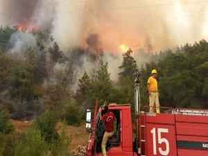 İzmir'de orman yangınları kontrol altına alındı