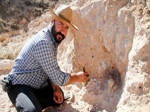 Çıkan fosiller şaşırttı