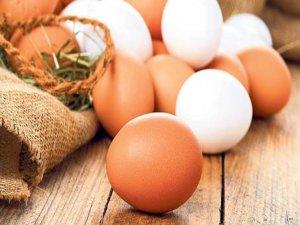 Yumurtanın ateşi düştü!