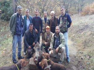 Bursa'da yaban domuzu avı