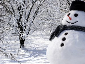 Kışa A ve C vitamini ile destek