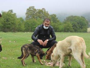 Uludağ'daki hayvanları unutmadılar