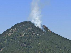 Bursa'da orman yangını!