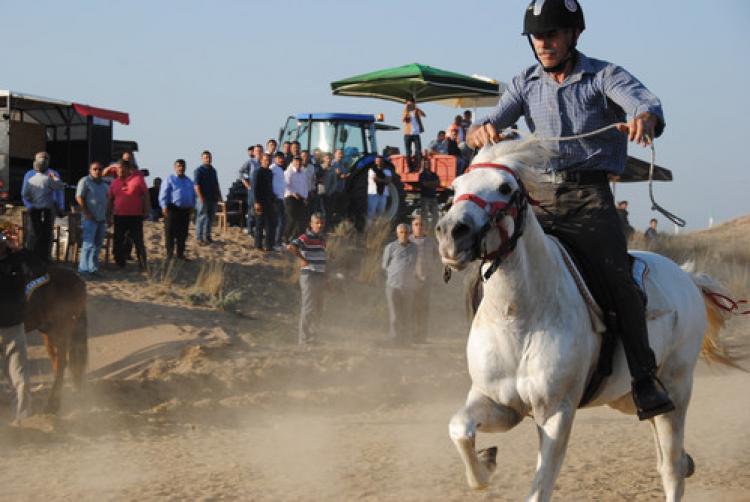 3. Side Rahvan At Yarışları Türkiye birincisi Konya'dan Küçükmeral oldu