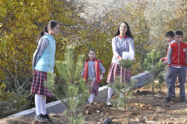 İmam hatip öğrencileri, okul bahçesine fidan dikti