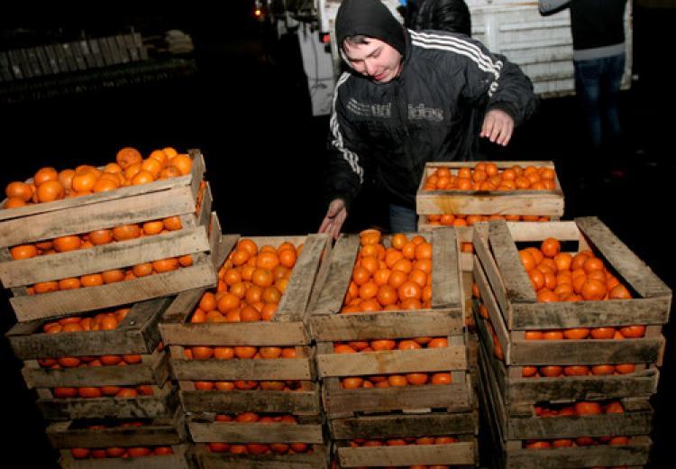 20 ton mandalinayı Türkiye'ye geri gönderdi