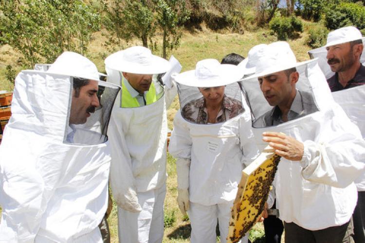 Van'daki çiftçilerin yüzü 'Organik Bal Arıcılığı' projesiyle güldü