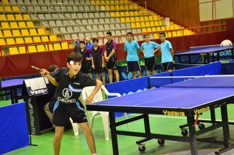 Yıldızlar Masa Tenisi D Grubu müsabakaları Adana'da tamamlandı