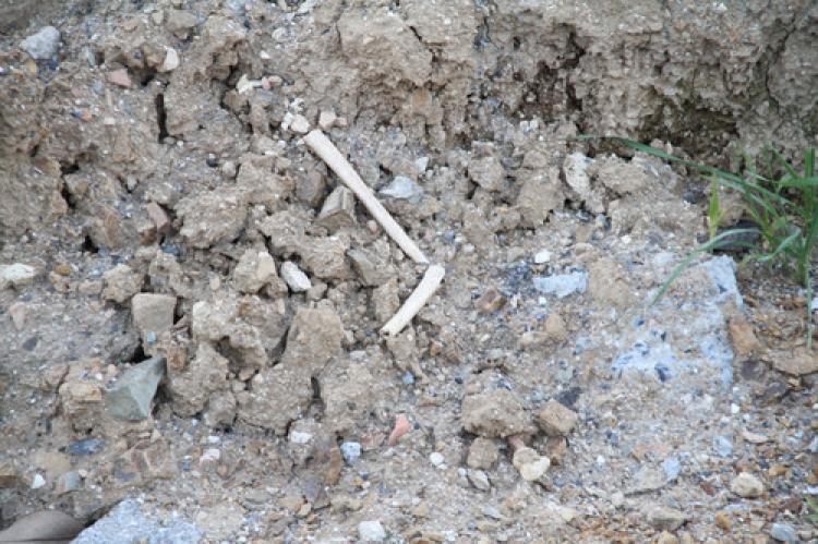 Taksim'deki kazılarda kafatası ve kemik bulundu