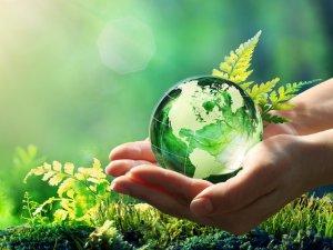 Vegan ve ekolojik hijyen ürünlerinin önemi
