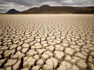 Covid sonrası toparlanma iklim için sürdürülebilir değil