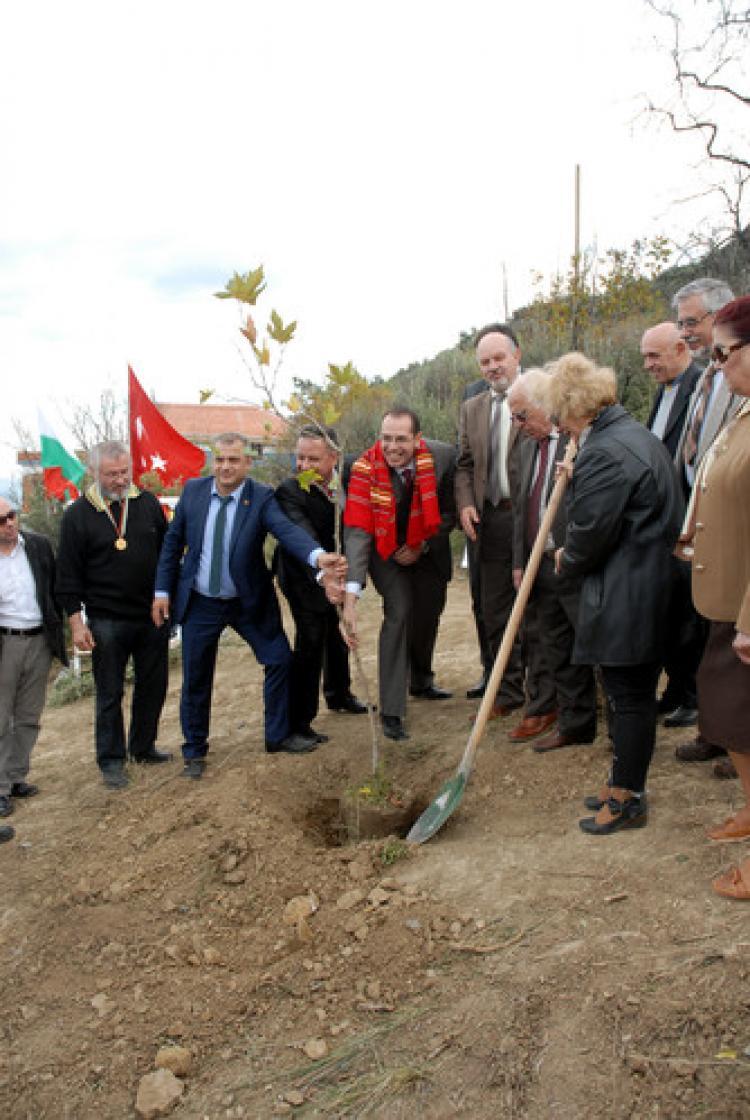 Türkiye-Bulgaristan dostluk çınarı Mudanya'da