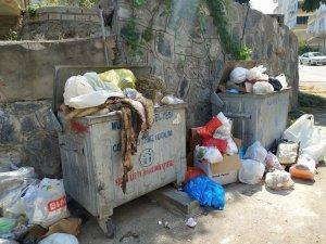 Bursa Büyükşehir'den sinek açıklaması