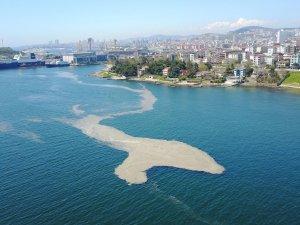 Bursa'dan Bakan'a musilaj çağrısı