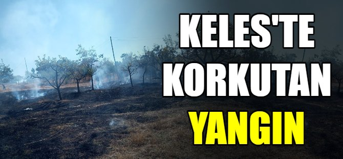 Keles'te korkutan yangın