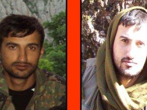 Başına tam 600 bin lira ödül konan terörist öldürüldü
