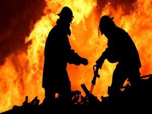 Bursa'da korkunç yangın! Hayvanlar telef oldu...