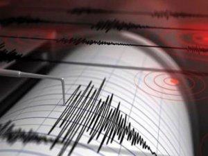 'Yalova depremi uyarıcı niteliğindeydi'
