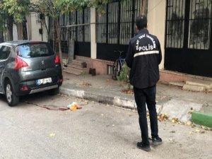 Bursa'da tüyler ürpeten cinayet!
