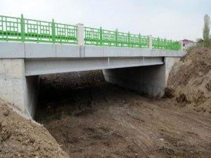 Köprünün yapımı tamamlandı!