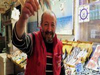 Bursa'da balık fiyatları yüzleri güldürdü