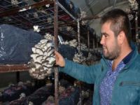 'Genç Çiftçi Projesi' hayatını değiştirdi