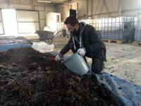 Bursa'da solucan gübresi tesisi kurdu