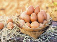 Bakanlıktan yumurta uyarısı