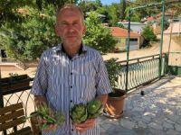 Bursa'da bu köye su gelmezse tarım bitecek