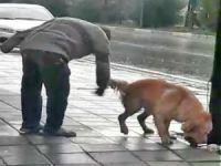 Bursa'da vicdanları sızlatan olay!