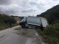 Bursa'da çöp kamyonu tarlaya girdi!