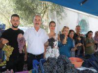 Mudanya'da bağbozumu şenliği