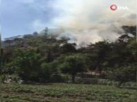Bursa'da orman yangınında son gelişme!