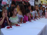 Bursa'da Çilek Festivali