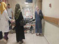 Bursa'da ceviz toplarken ölümden döndü