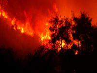 Bursa'daki yangın havadan görüntülendi!