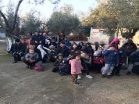 Çanakkale'de 430 mülteci yakalandı