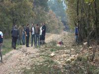 Bursa'da ağaçta asılı bulundu