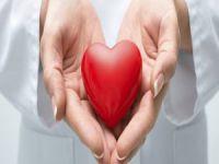 Bursa organ bağışında zirvede